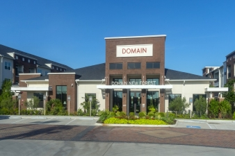 Domain New Forest